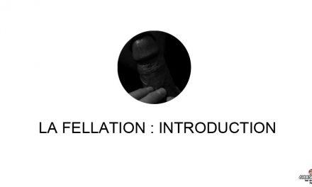 La fellation : Introduction