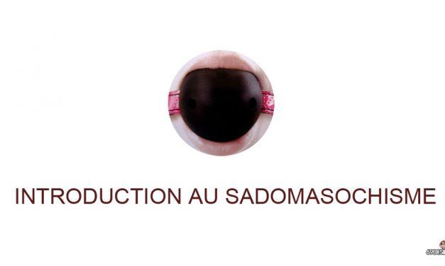 Le Sadomasochisme : Introduction