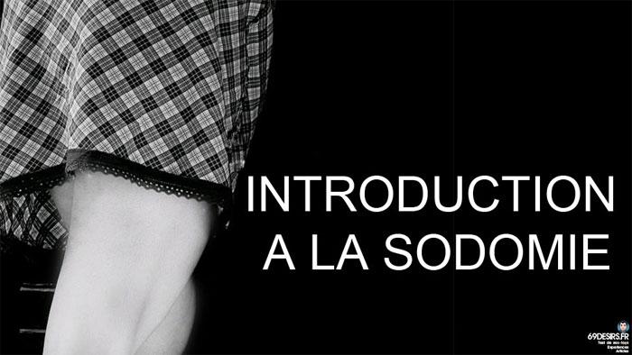 préliminaires de la sodomie - introduction