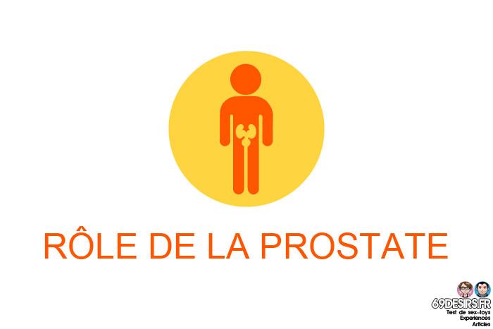 stimulation prostatique : le rôle de la prostate