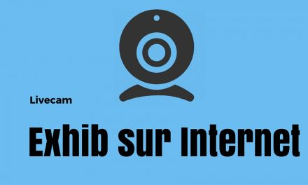 Livecam : Week-end d'exhib sur Internet