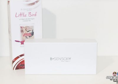 Little Bird - Packaging 4