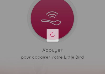 Little Bird - App 3
