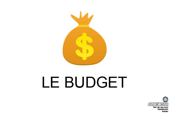 choisir son premier sextoy - budget