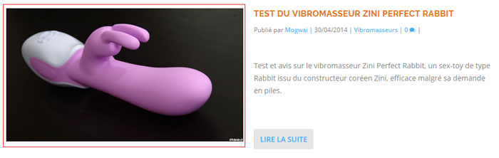 faux blog de sextoys - vol de photo - photo 2