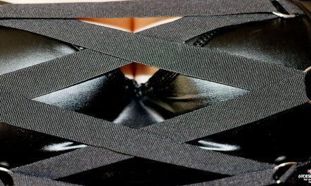 Avis sur le Soutien-gorge demi-corset Fierce